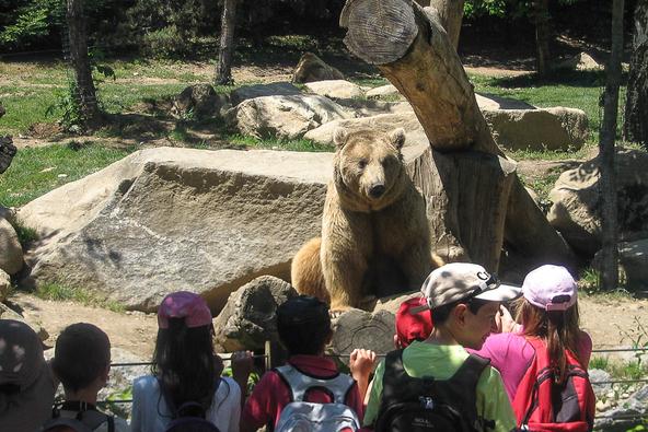Visite du parc animalier
